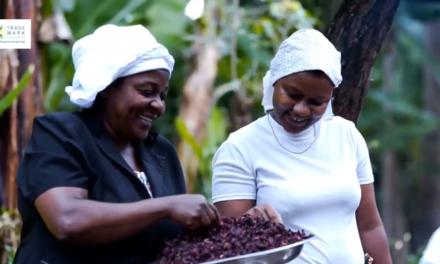 TradeMark East Africa ilivyowakomboa akina mama Holili.